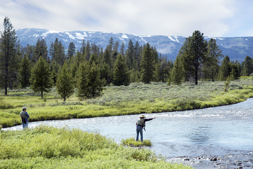 fly_fishing_couple_in_yellowstone_national_park.jpg